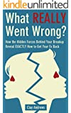 What Really Went Wrong: How the Hidden Forces Behind Your Breakup Reveal Exactly How to Get Your Ex Back
