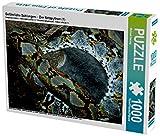 Gefährliche Schlangen -  Der Netzpython (1) 1000 Teile Puzzle quer: Schlangen - geheimnisvolle Wesen aus Urzeiten. Symbol für Macht, Tod und Unheil, ... und ewigem Leben. (CALVENDO Tiere)