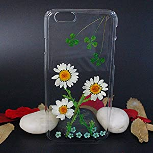 Beautiful Real Flowers Clear Slim Unique Design Phone Case for iPhone 6(13)