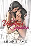A Valentines Surprise (Seasons of Love Book 1)