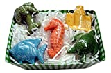 Tropical Beach Bath Soaps Gift Basket 5 Assorted Sealife Shaped Soaps