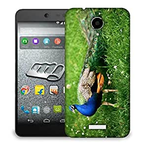 Snoogg Peacock Designer Protective Back Case Cover For MICROMAX Q416