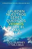 ¿Pueden nuestros seres queridos vernos desde el más allá?: ...y 33 preguntas más que revelan la realidad del cielo (Spanish Edition)