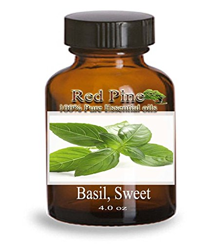 Sweet Basil Essential Oil - Ocimum Basilicum - 100% Pure Therapeutic Grade - Essential Oil From Flora Power By Red Pine, Inc. (120 Ml - 4 Oz)