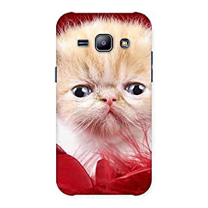 Impressive Kitty In Red Fur Back Case Cover for Galaxy J1