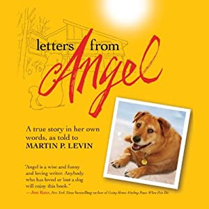 Letters from Angel | [Martin P. Levin]