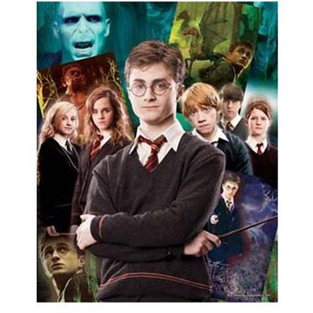 Cheap Hobbico Visual Echo 3D Effect Harry Potter Collage 500pc Lenticular Puzzle (B000YB9WMW)
