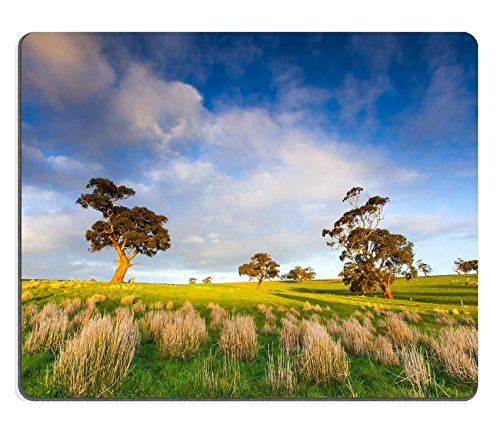 luxlady-gaming-mousepad-image-id-26072794-late-afternoon-in-the-clare-valley