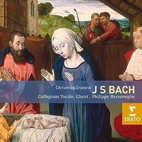 Christmas Oratorio BWV248, Cantata 5: Am Sonntage nach Neujahr: Choral: Dein Glanz all' Finsternis verzehrt