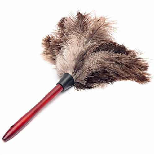 xumarkettm-20cm-anti-static-natural-fall-ostrich-fur-feather-duster-brush-wood-handle-household-clea