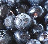 冷凍 ブルーベリー 3kg カナダ産 ランキングお取り寄せ