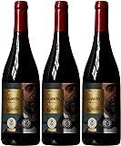 Bodegas Olarra Rioja Sagasta Crianza 2011 75cl (Case of 3)