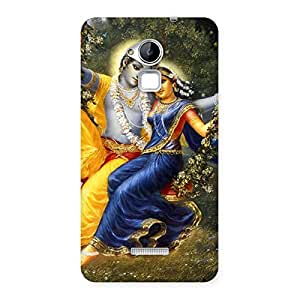 Gorgeous Radha Krishna Multicolor Back Case Cover for Coolpad Note 3