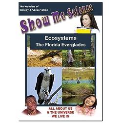 Ecosystems - The Florida Everglades