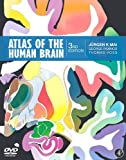 img - for Atlas of the Human Brain, Third Edition by Mai, Juergen K., Paxinos, George, Voss, Thomas (2007) Spiral-bound book / textbook / text book