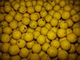 12mm sweetcorn boilies x60 from BIG CARP BAITS - Huge selection of fishing baits! More than 1500 different bait products to choose from!