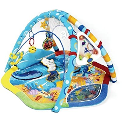 Amazon Com Baby Einstein Discovering Water Play Gym Baby