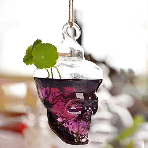 bluelover-hydrokultur-pflanzen-garten-flower-pot-schadelform-hangen-glasvase