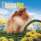 Guinea Pigs 2015 Calendar