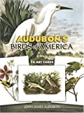 Audubon's-Birds-of-America-24-Art-Cards-Card-Books