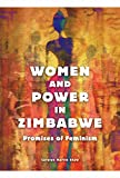 img - for Women and Power in Zimbabwe: Promises of Feminism book / textbook / text book