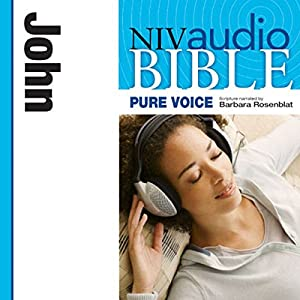 NIV New Testament Audio Bible, Female Voice Only: John Audiobook