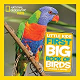 img - for National Geographic Little Kids First Big Book of Birds (National Geographic Little Kids First Big Books) book / textbook / text book