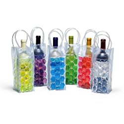 6 Assorted: Plastic Chiller Bags