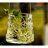 2pcs/lot Clear Hanging Glass Vase Beautiful Hydroponic Flower Glass Terrarium Home Decoration Glass Vase Wedding...