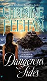 Dangerous Tides (0515141542) by Feehan, Christine
