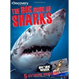 Discovery Channel The Big Book of Sharks ~ Jack Silbert