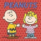 Acquista Peanuts 2013 Calendar