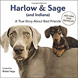 img - for Harlow & Sage (and Indiana): A True Story About Best Friends book / textbook / text book