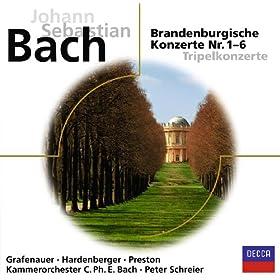 Bach: Brandenburgische Konzerte (Eloquence)