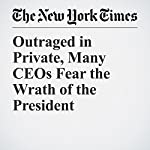 Outraged in Private, Many CEOs Fear the Wrath of the President | Andrew Ross Sorkin