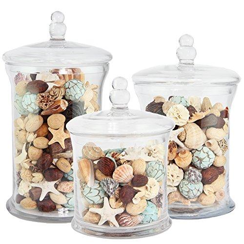 Apothecary Jar 3 Piece Set, Wedding Candy Buffet, XX Large, 16.5