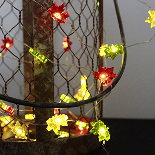 Thanksgiving String Lights Outdoor : IMPRESS LIFE Maple Leaves Fairy Remote String Lights on 50 LEDs 10 ft Copper Wire for Covered ...