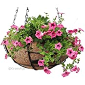 GreenAge COCO FIBER HANGING PLANTER POT With Metal Frame, Hanging Chains-Size 10 Inches- 1 Pc