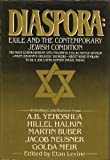 img - for Diaspora: Exile and the Contemporary Jewish Condition book / textbook / text book