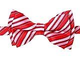 (リトリーズ) RETREEZ レトロマルチトーンストライプ 織物 マイクロファイバー 作り結び式男児用蝶ネクタイ - レッド - 4 - 7歳
