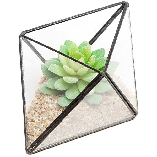 Modern Diamond Design Clear Faceted Succulent Air Plant Planter Box Pot / Keepsake Display Bowl - MyGift®