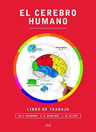 EL CEREBRO HUMANO descarga pdf epub mobi fb2