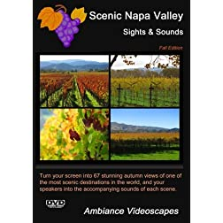 Scenic Napa Valley - Sights & Sounds - Fall Edition