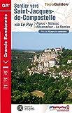 Sentier vers Saint-Jacques-de-Compostelle : Figeac - Moissac / Rocamadour - La Romieu: Topo-guide de Grande Randonn�e