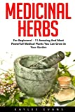 Medicinal Herbs: For Beginners! - 11 Amazing And Most Powerful Medical Plants You Can Grow In Your Garden! (Herbal Remedies, Alternative Medicine, Healing Herbs)