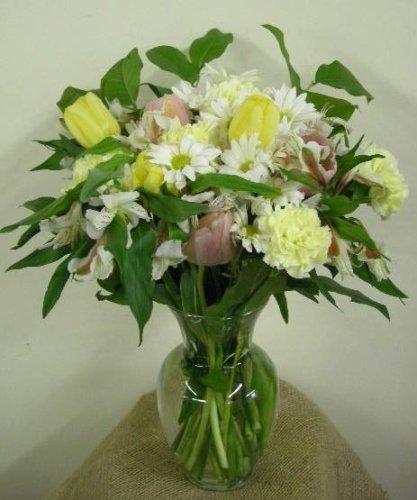 Simplicity Fresh Cut Flower Arrangement w/ Vase