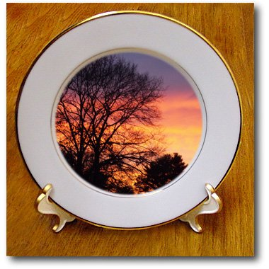 cp_202480 Renderly Yours Scenic Inspirations - Trees Silhouetted Against Orange, Pink, Indigo Sky At Sunset - Plates