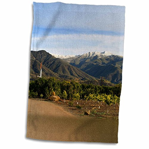 3dRose Henrik Lehnerer Designs - Nature - Landscape shot of the Ojai valley with snow on the mountains. - 12x18 Towel (twl_211630_1) (Ojai Hotels compare prices)