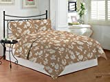 Bombay Dyeing Cardinal Cotton Double One bedsheet and Two Pillow cover Brown