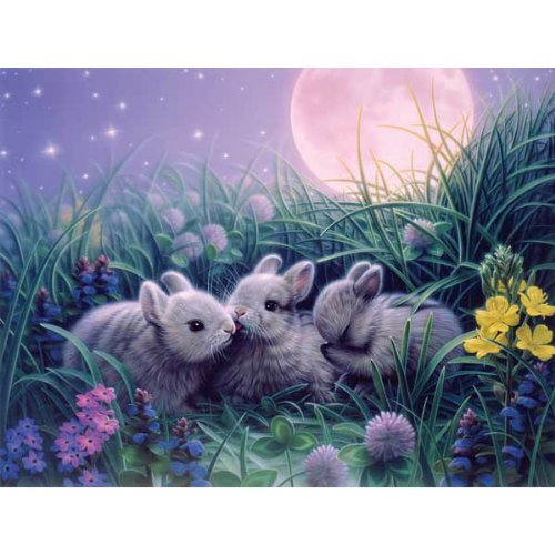Cheap SunsOut Kirk Reinert Moon Babies Jigsaw Puzzle 300pc (B0014O6IH0)